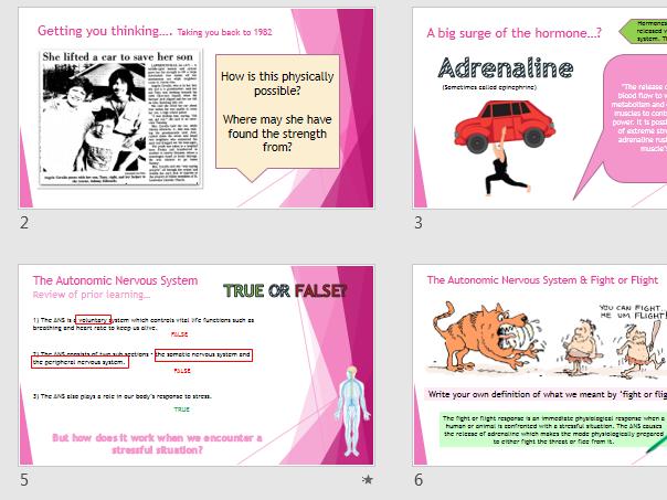 AQA GCSE (9-1) Psychology - Brain & Neuro Lessons