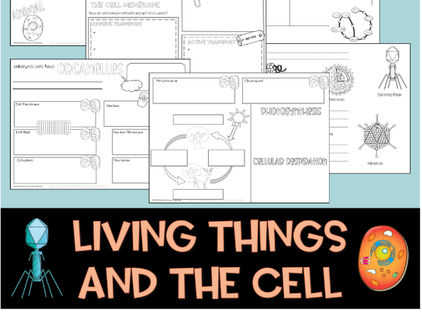 Living Things and the Cell Doodle Notes