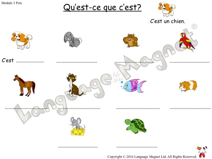 French Pets Activity Sheets