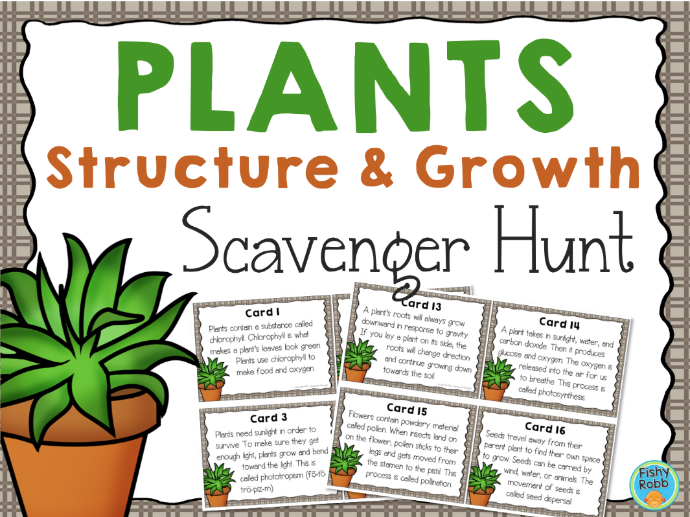 Plant Structure and Growth Scavenger Hunt Activity