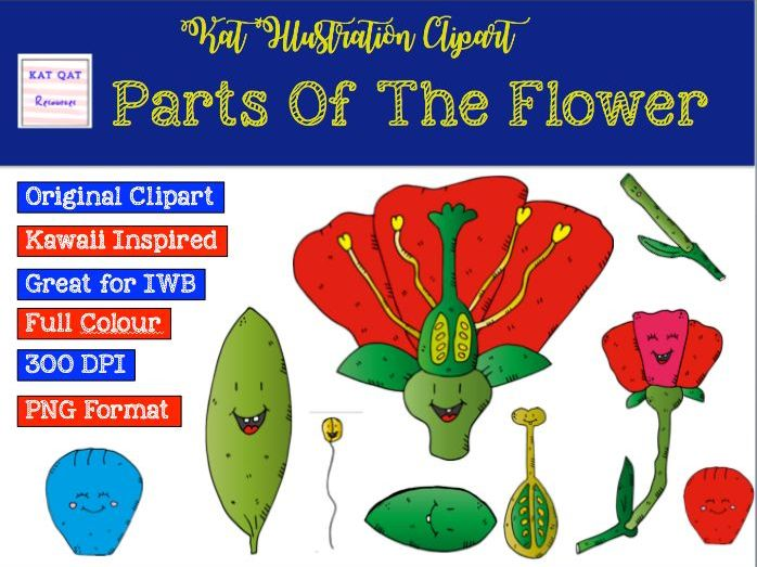 Parts of the flower clipart