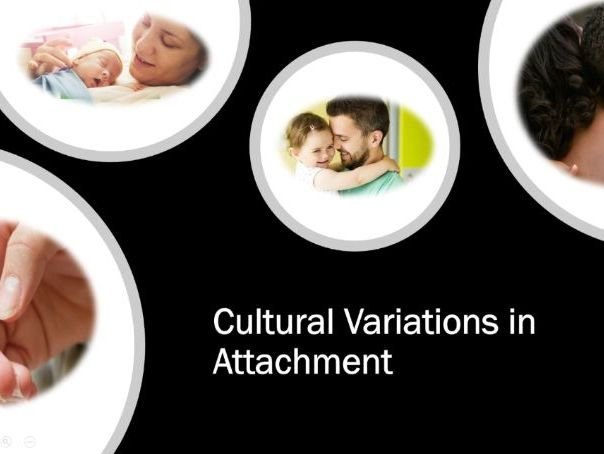 Cultural Variations in Attachment - AQA - A Level - Psychology