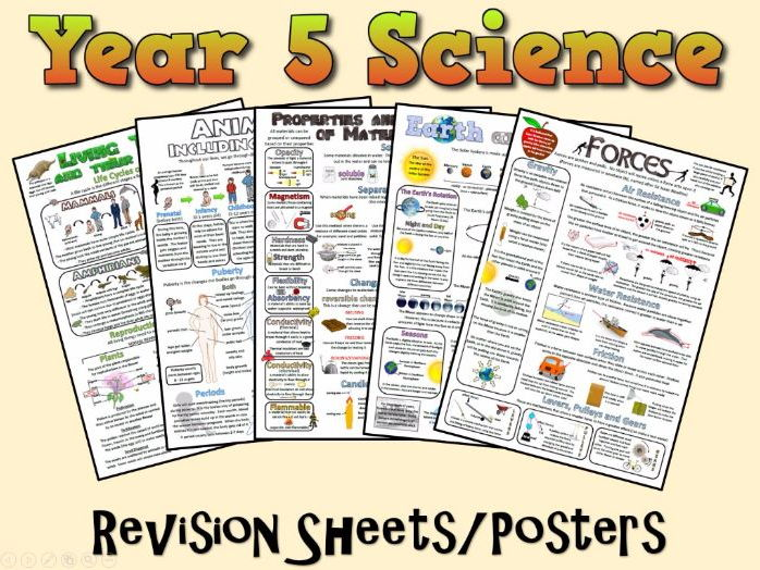 Year 5 Science Posters/Revision Sheets