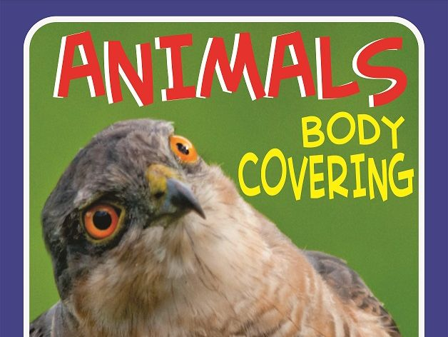 ANIMALS BODY COVERING FUN VIDEO