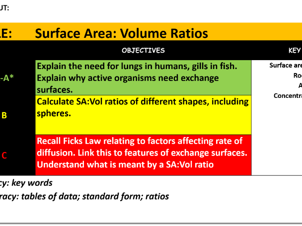 surface area to volume ratio affect on diffusion