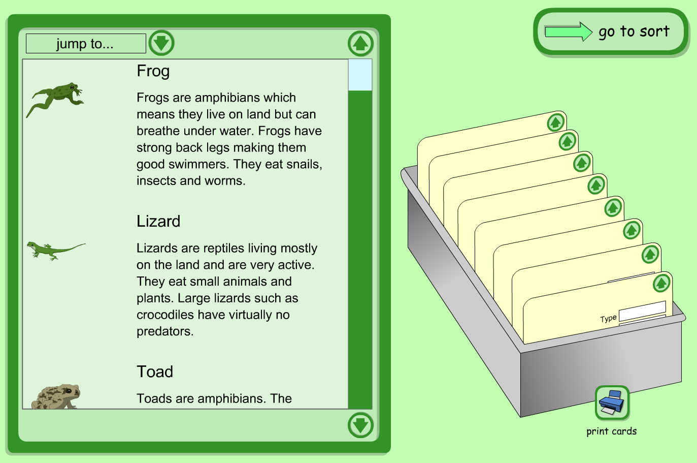 Interactive Index Cards Activity - Minibeasts, Reptiles and Amphibians  - KS1 Literacy