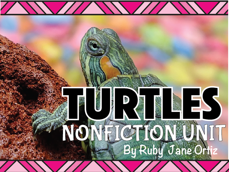 Turtle Nonfiction Unit
