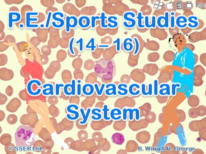 PE14ST - Cardiovascular System