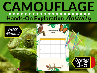 Camouflage Modeling Activity