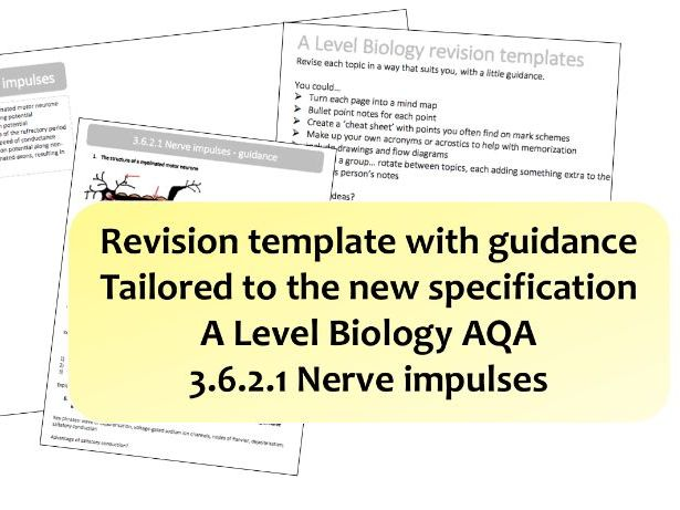 revision templates