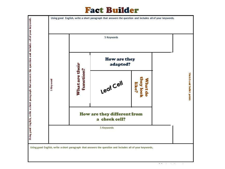 Specialised Cells Fact Builder Activity