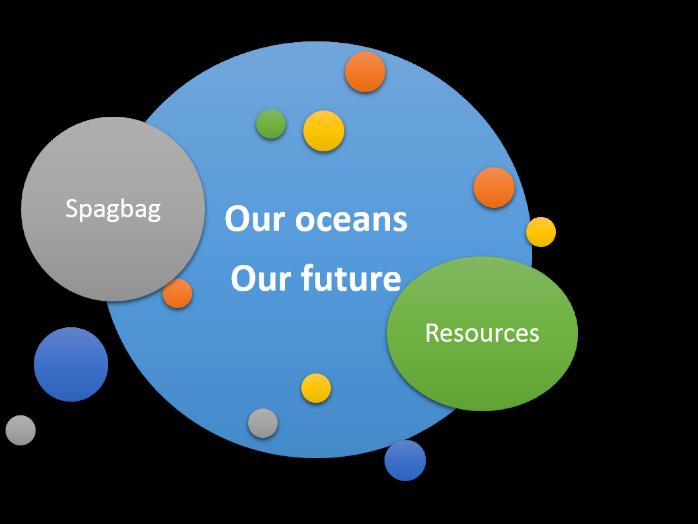 Sea turtle conservation information and worksheet