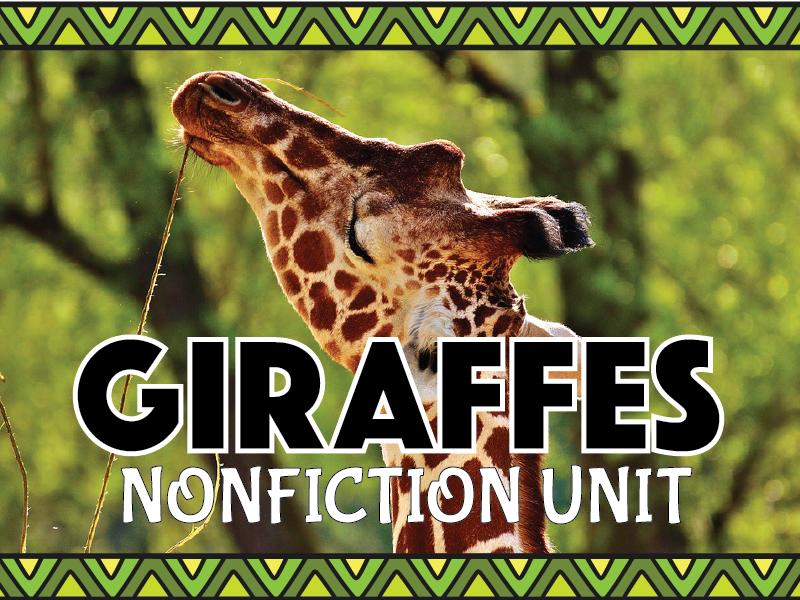 Giraffe Nonfiction Unit