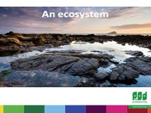 Biodiversity assembly