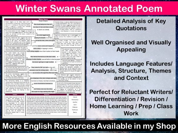Winter Swans Annotated Poem