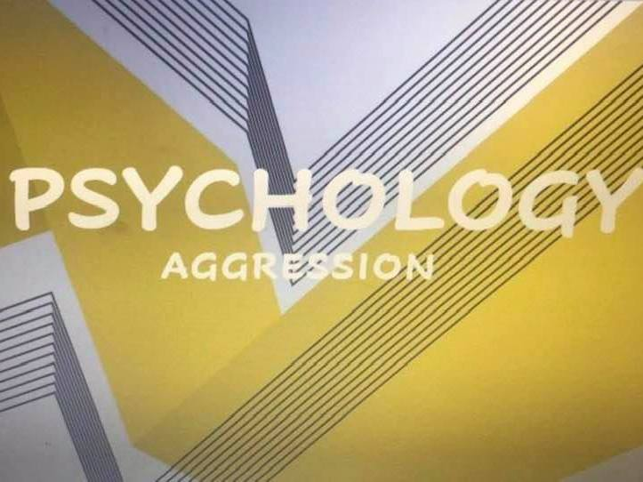 Psychology- Aggression revision notes A Level or GCSE