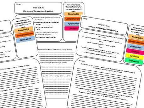 1. Memory & Storage differentiated Class work and Homework sheets