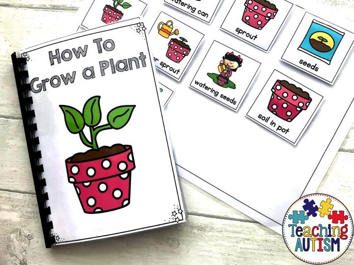 Growing a Plant, Sequencing Adapted Book
