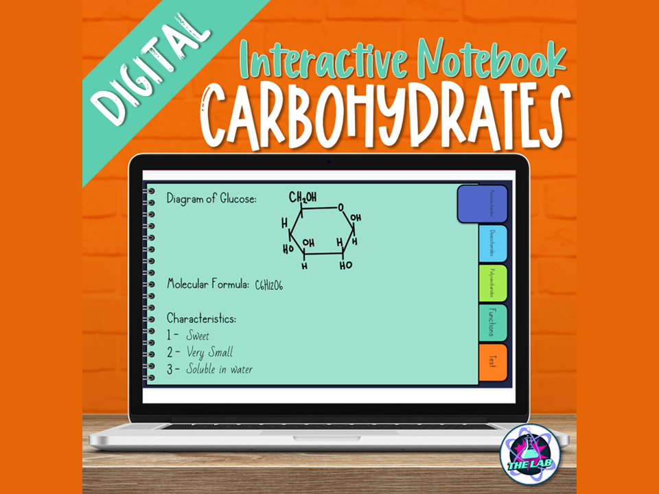 Carbohydrates Digital Interactive Notebook