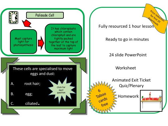 KS3 Specialised Cells - Whole Lesson