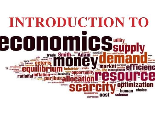 The Walking Dead Island Economy  Economics Activity