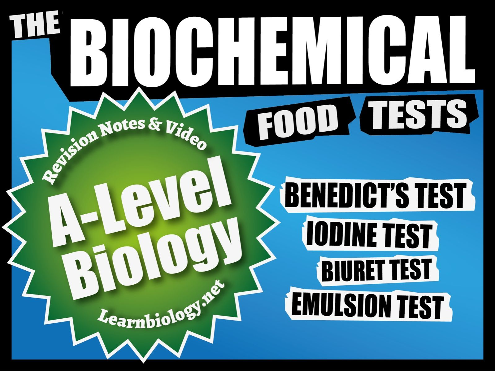 A-Level Biology: The Food Tests, Revision Notes and Worksheets.
