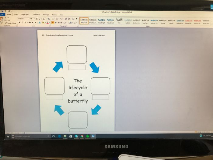 EYFS Life-Cycle of a Butterfly Writing Frame - Mini-beast Topic