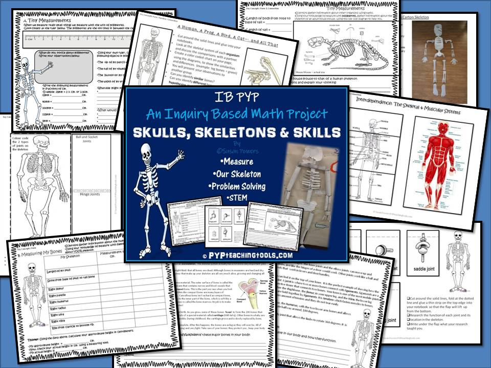 Skulls, Skeletons and Skills - An Inquiry Based Maths Project