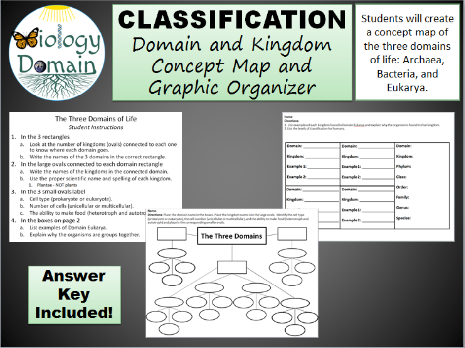 domain and kingdom classification  concept map and graphic