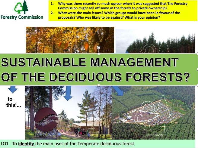Sustainably Managing the Temporate Deciduous Forests? Ecosystems
