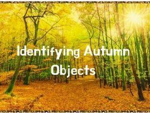 Identifying Autumn Objects Worksheet