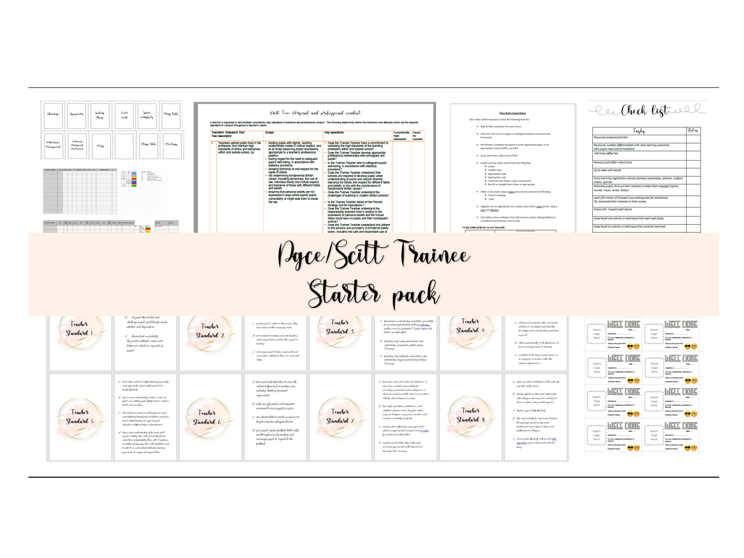 PGCE SCITT Trainee Bundle Rose Gold Edition