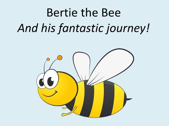 Sensory Story - Wildlife - Bertie the Bee