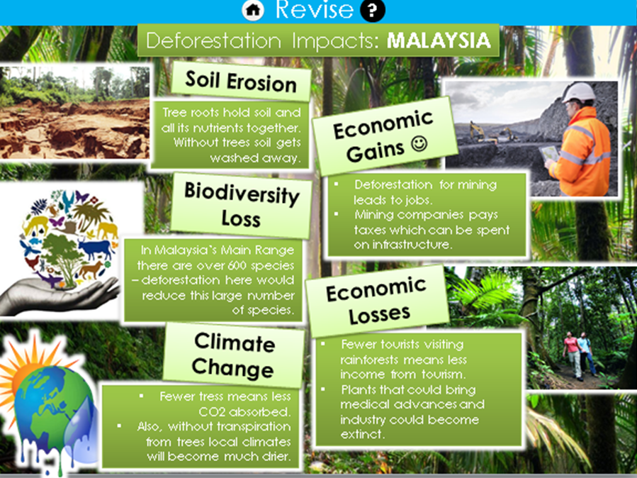Geography Revision GCSE AQA 9 -1 - Case Study Revision Slides