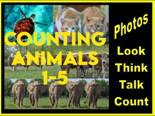 Animal Photographs Counting PPT from 1-5