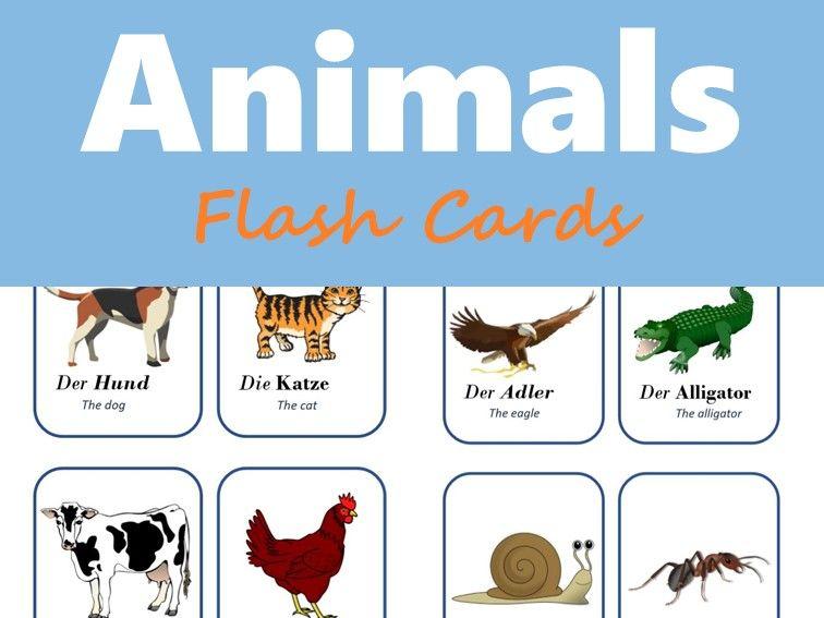 Tiere - German Animals Flash Cards (Domestic, Wild, Maritime)