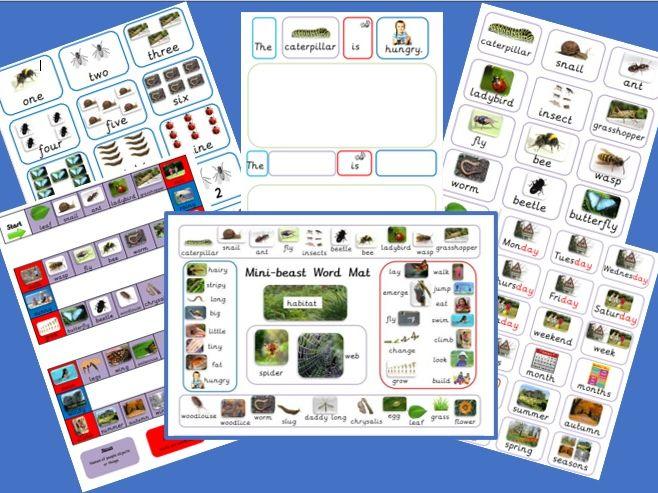 Minibeasts Resource KS1