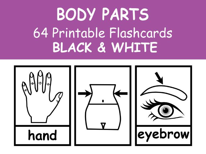 BODY Flashcards BLACK & WHITE For EFL\ESL\ENL