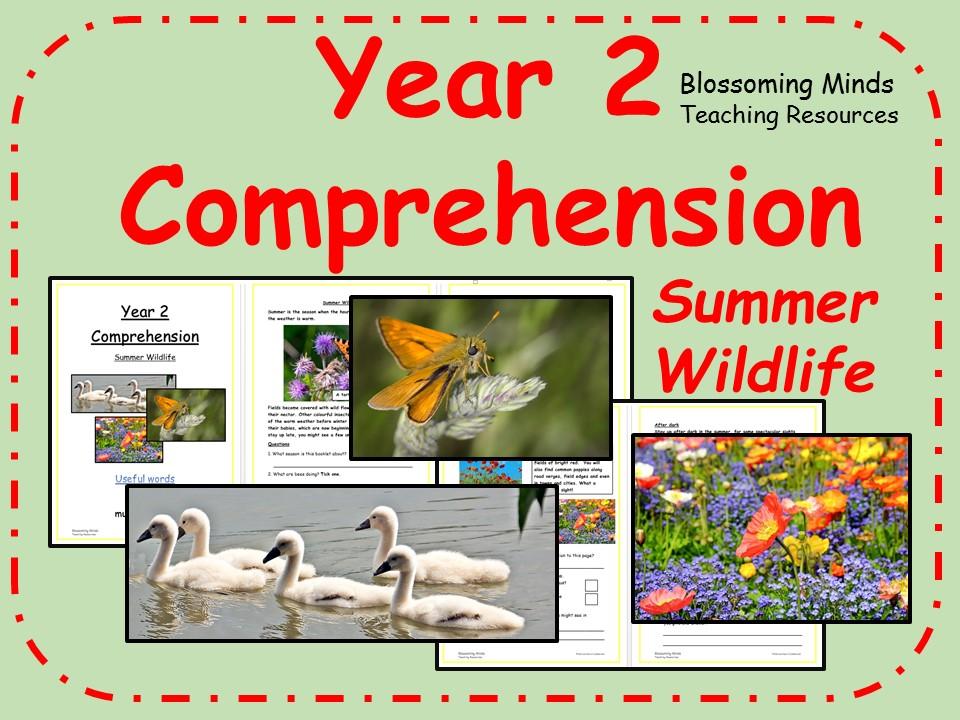KS1 SATs comprehension - Summer wildlife