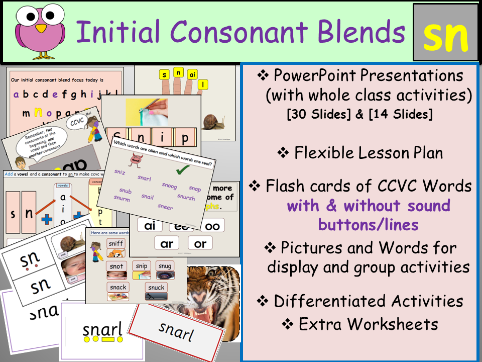 Phonics Phase 4 Consonant Blend Sn Ccvc Words Presentations