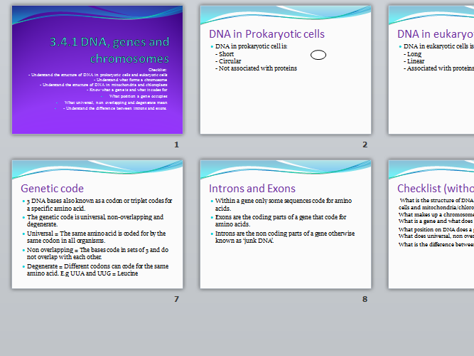 AQA A Level Biology New Spec 3.4.1 DNA,genes and chromosomes
