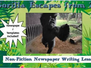 Gorilla Escape – Non-Fiction Newspaper Writing Lesson