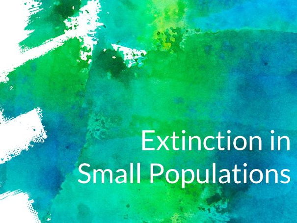 Small Populations and Extinction Risk