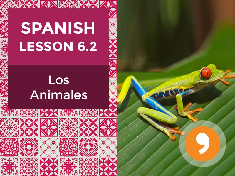 Spanish Lesson 6.2: Los Animales - Animals
