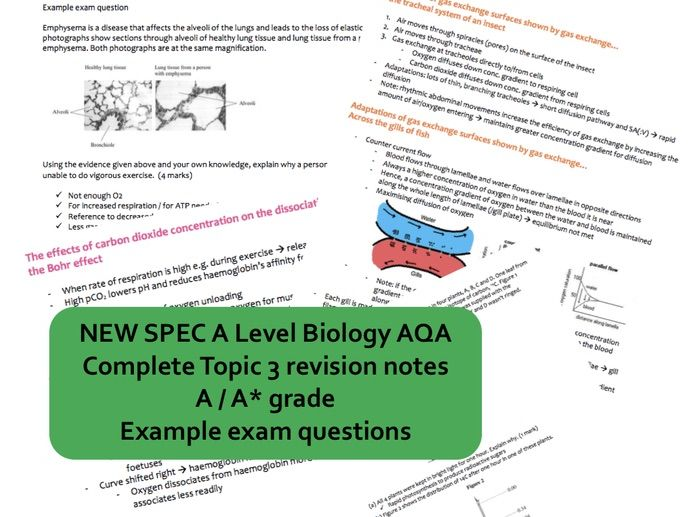 NEW AS Biology AQA topic 3 ORGANISMS EXCHANGE SUBSTANCES WITH THEIR ENVIRONMENT revision book - A/A*