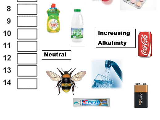 pH Scale Acid and Base activity