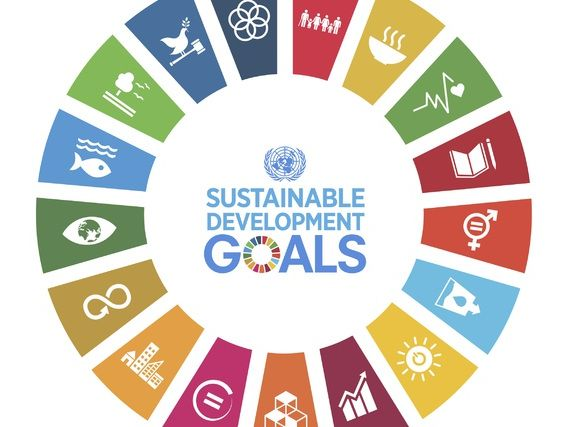 How will we achieve the Sustainable Development Goals