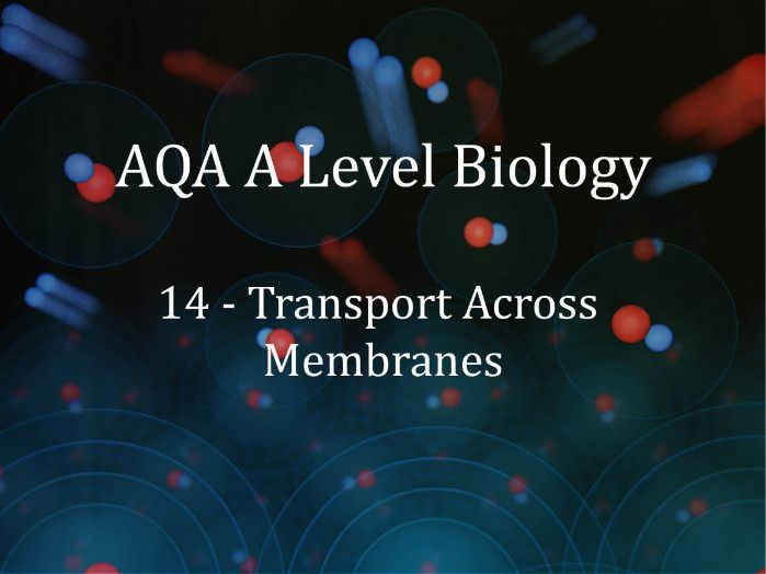 AQA A Level Biology Lecture 14 - Transport Across Membranes