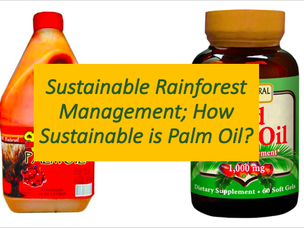 How Sustainable is Palm Oil? Rainforests - Ecosystems