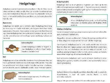 Non-Chronological report (Hedgehog example) and features checklist